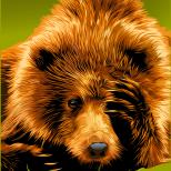 Медведь уже не дремлет