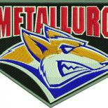 Логотип Стальные лисы