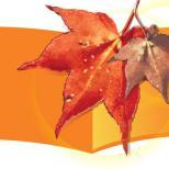 Осенние листья (CorelDRAW X3)