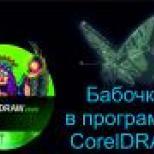 бабочка в программе CorelDRAW